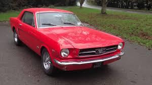 64 Mustang Black Kate