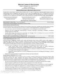 Risk Management Resumes Parts Manager Resume Best Resume Sample Sample Resume Picture