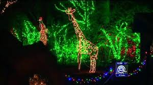 when does the lights at the toledo zoo start what a zoo happy zoo year