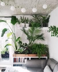 Inside Home Plants by смотрите это фото от Urbanjungleblog на Instagram U2022 отметки