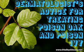 not poison in n d advice for treating poison oak and poison