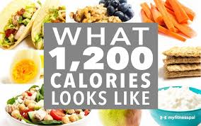 what 1 200 calories looks like infographic myfitnesspal
