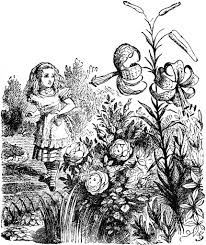 flower garden drawing black and white pencil drawing flower garden