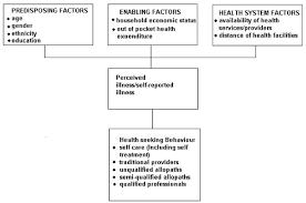 Seeking Text Conceptual Framework For Care Seeking Behaviour For Childhood