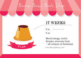 weird calendar days to celebrate just b cause week by week bump boxes bump boxes pregnancy subscription
