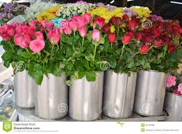 flowers for sale flowers for sale at market stock image image of bloom 35143285