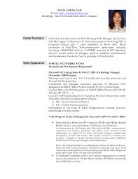 Resume Professional Statement Examples by Resume Career Summary Examples For Resume