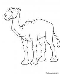 printable animal baby camel coloring page for kids printable