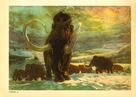 50 woolly mammoths images extinct animals