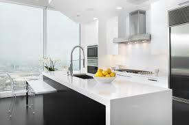 Kitchen European Design Scott Dresner Masters European Designed Cabinetry River North