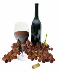 techniques in home winemaking the home winemaking wine at home is easy with our advice for