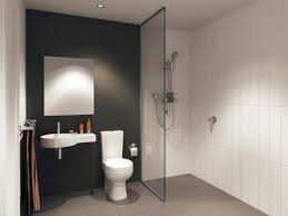 simple bathroom decorating ideas pictures bathroom small bathrooms with showers style bathroom