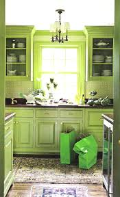 100 lime green kitchen canisters ceramic brilliant decor birdcages