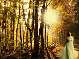 fantasy autumn wallpaper forrest women sun fantasy walk fall brown autumn wallpaper