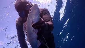 Hawaii travel channel images Kinga tries spearfishing video kinga in hawaii travelchannel jpg