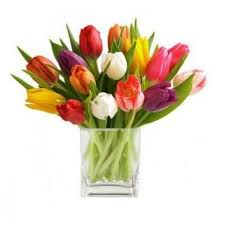 flowers to send gifts and flowers delivery lebanon 18 stem mixed tulip bouquet