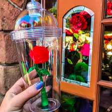 disneyland beauty and the beast rose cup popsugar food