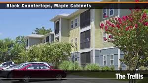 luxury homes savannah ga trellis apartments u2013 savannah ga 31419 u2013 apartmentguide com youtube