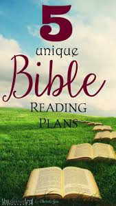 best 25 bible reading schedule ideas on pinterest bible