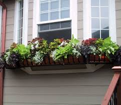 planters glamorous flower boxes for railings flower boxes for