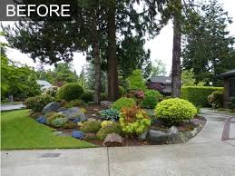 exciting low maintenance backyard landscaping pictures best