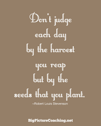 quotes archives big picture coaching