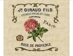 french parfum ad instant clip art pink rose digital download