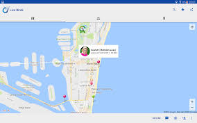 Map My Friends Live Birds Map Me U0026 Friends Android Apps On Google Play