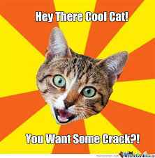 Cool Cat Meme - hey there cool cat by the35thoptic meme center