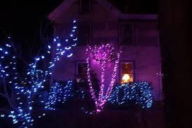 Stone Zoo Lights by Christmas Light Police