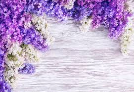 lilac flowers lilac flower background blooms pink flowers on wood plank stock