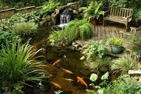 water efficient garden ideas water garden ideas for refreshing