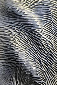 closeup of carved ceramic tile u2026 pinteres u2026
