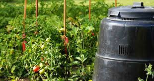 Backyard Composter Composting Made Easy For You Composting Basics