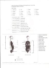 Human Anatomy And Physiology Chapter 1 Human Anatomy Worksheets Printable Top Download 10 Free Anatomy