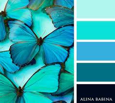best 25 aqua color palette ideas on pinterest aqua gray bedroom