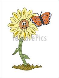 sunflower and butterfly stock illustration i1295544 at featurepics