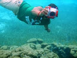 Kentucky snorkeling images Mystic snorkel cozumel mexico top tips before you go with jpg