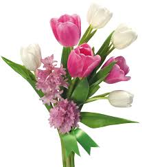 spring bouquet of tulips and hyacinths png transparent picture
