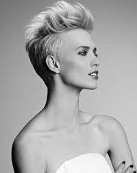 pictures of womens short dark hair with grey streaks best 25 funky short hair ideas on pinterest funky hair funky