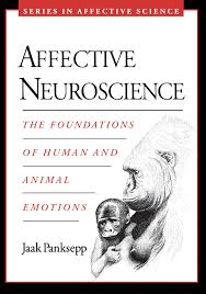 Affective Blindness Affective Neuroscience The Foundations Of Human And Animal
