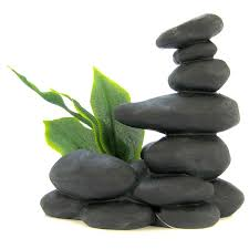 blue ribbon pet products zen spa stones with plant black