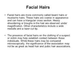 heavy pubic hair hair analysis supa forensics ppt download