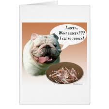 bulldog thanksgiving gifts on zazzle