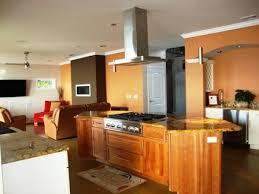 hotte aspirante d angle cuisine cuisine hotte aspirante d angle cuisine avec orange couleur hotte