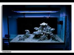 Reef Aquascape Designs Aquascape A 50 Glns Cube Reef Aquarium With Only 35lbs Bulk Reef