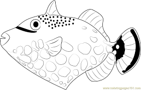 clown trigger fish coloring free fish coloring pages