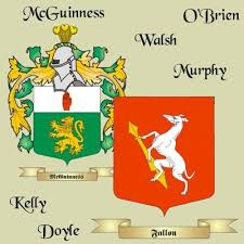 100 surnames explained genealogy coats of arms how