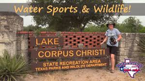 Texas wildlife tours images Lake corpus christi state park campground tour rv texas jpg