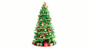 christmas tree isolated on white background loopable royalty
